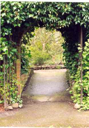 Arch from walled garden